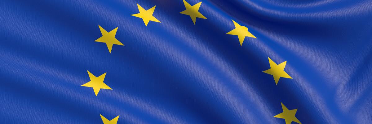 Consulenza normativa EU